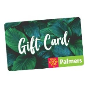 Gift-card-product