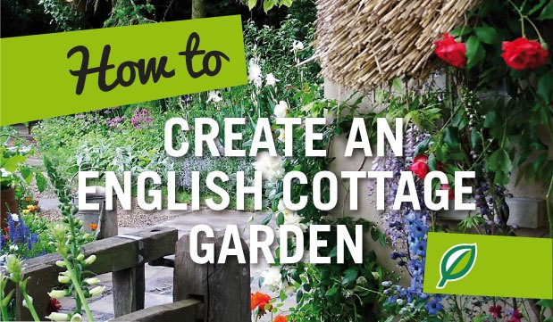 How to Create an English Cottage Garden Palmers Garden Centre
