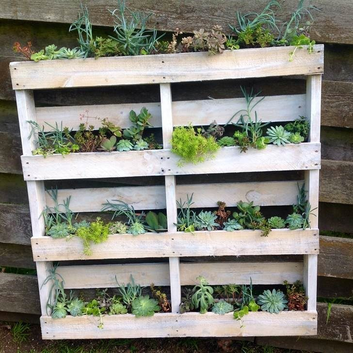 Planter From Pallet: DIY: Pallet Wall Planter