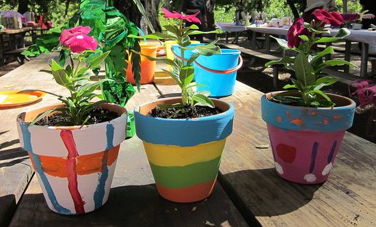 Fun Winter Gardening Activities For Kids Palmers Gardeb