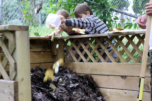 Image Result For How To Start A Compost For Your Garden