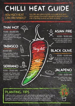 chilli-heat-guide-a3-poster-finalart-web