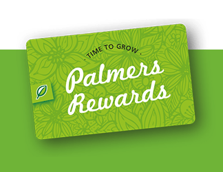 rewards-2