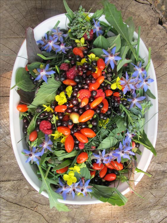 summer salads with edible flowers