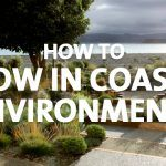 grow in coastal environments