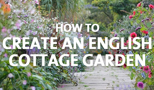 How To Create An English Cottage Garden Palmers Garden