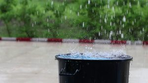 Rain barrel - 12 top home gardening hacks