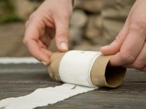 Toilet paper seed tape - 12 home hacks for your garden