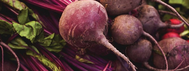 The Guide to Growing Beetroot