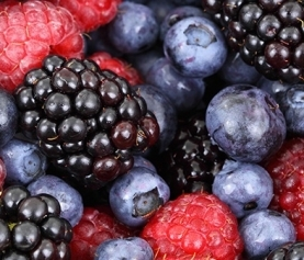 A Guide to Growing Berries