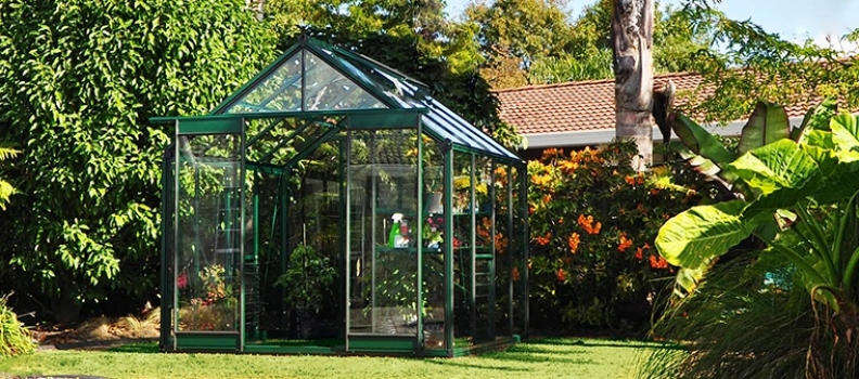 The Guide to Greenhouse Growing