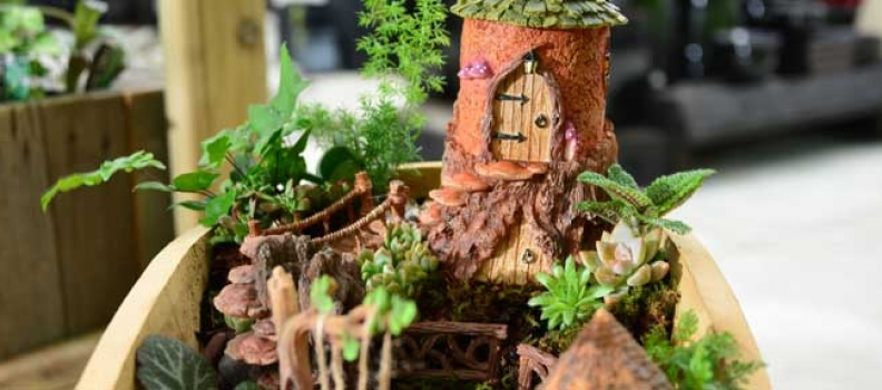 The World of Miniature Gardens