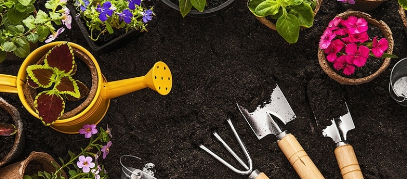 The Top 5 Tools You Need For Spring