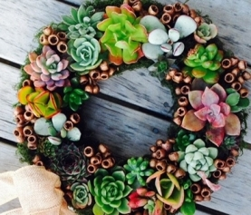 DIY: How to Make a Succulent Wreath