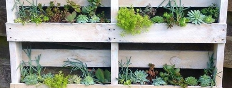 DIY Pallet Wall Planter
